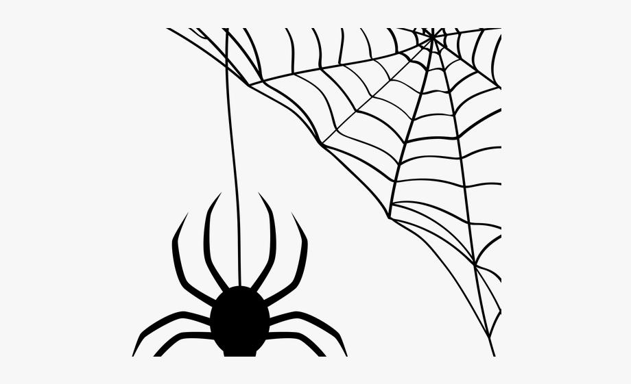 image Drawn arachnid cobweb transparent. Spider web with spider clipart