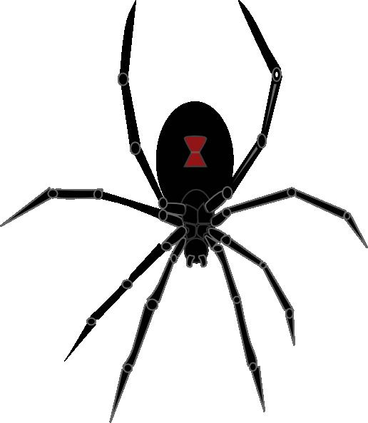 clip art library download Black Widow Spider Clip Art at Clker