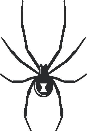 freeuse Black Widow Spider Halloween Wall Decal