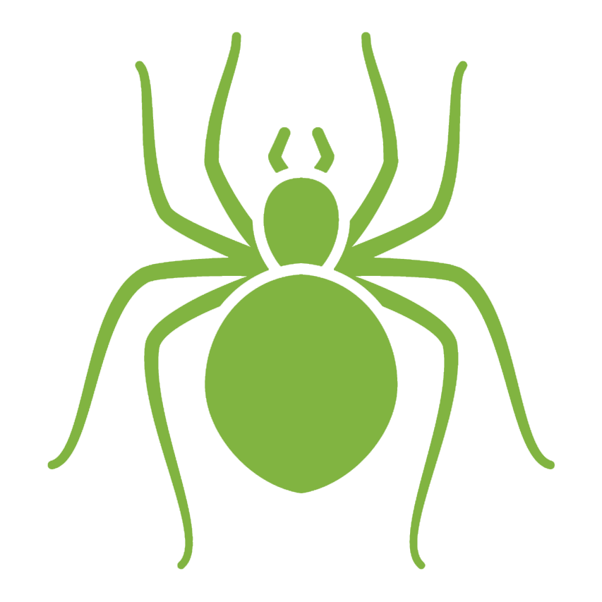 vector library Transparent . Spiders clipart green spider.