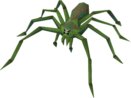 vector royalty free library Jungle spider