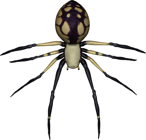 royalty free download Spider Thirty