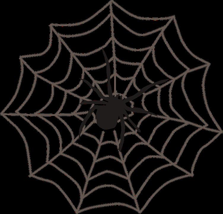 svg transparent Corner Spider Web Clipart