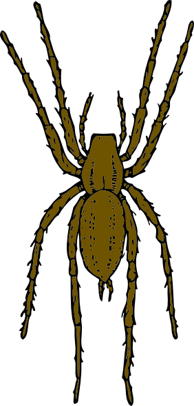 banner library library Spiders clipart yellow spider
