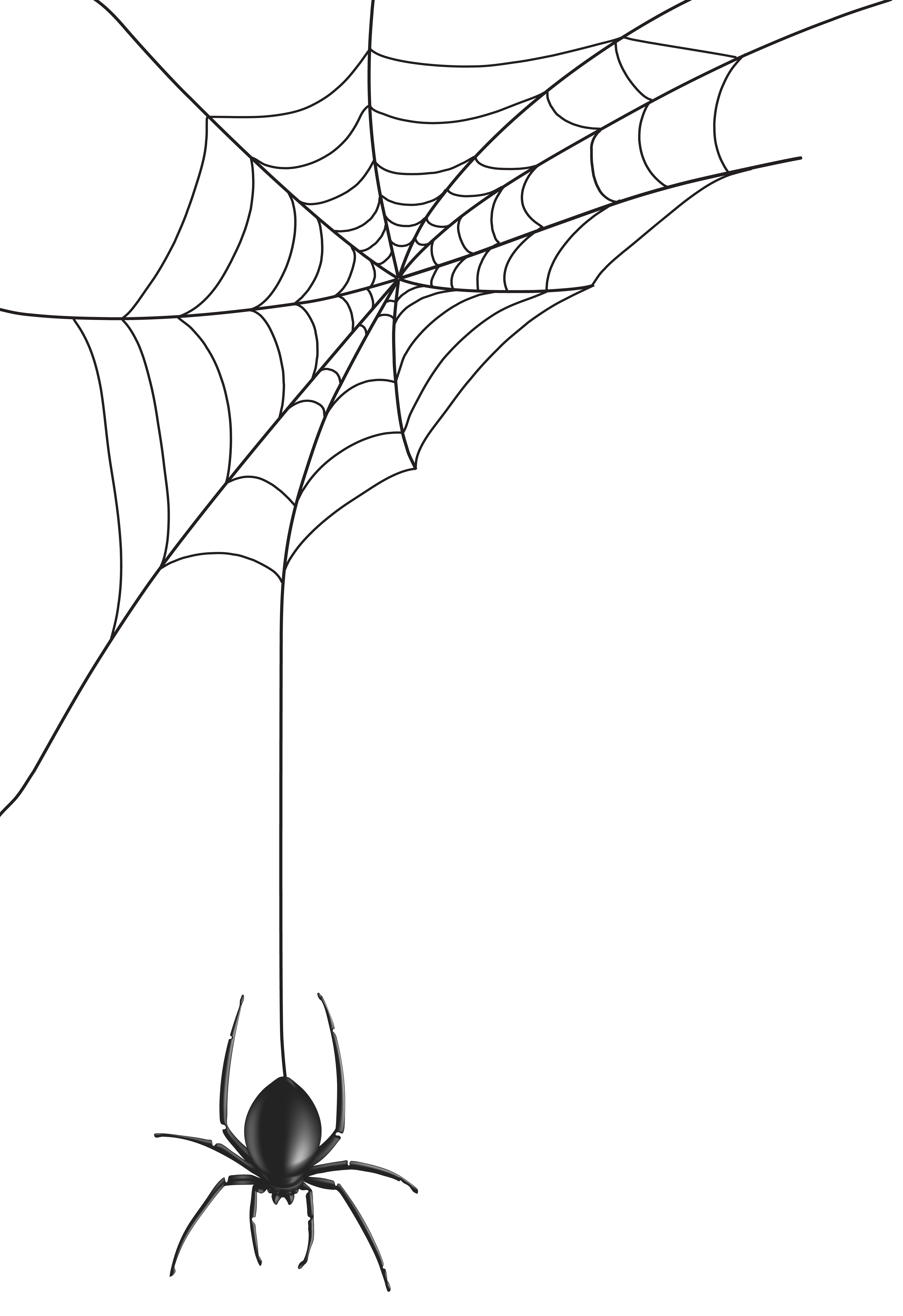 banner stock Spider web clipart. Png clip art image