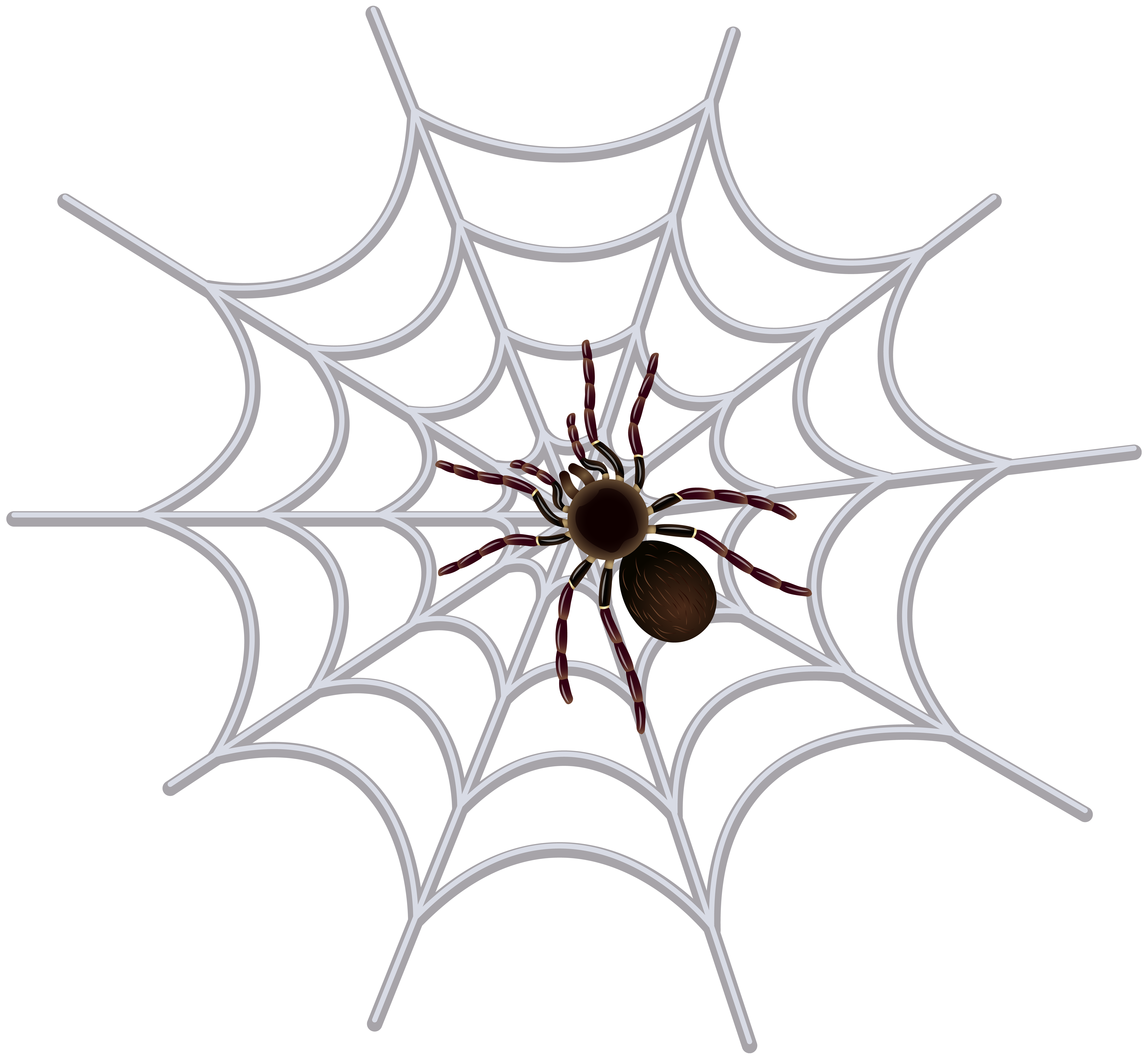 jpg black and white library Spider web images clipart. Transparent clip art image