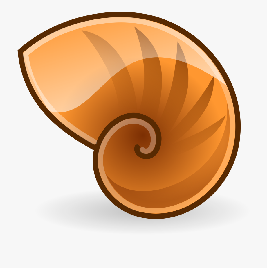 clip art freeuse Spiral clipart shell nautilus. File manager logo