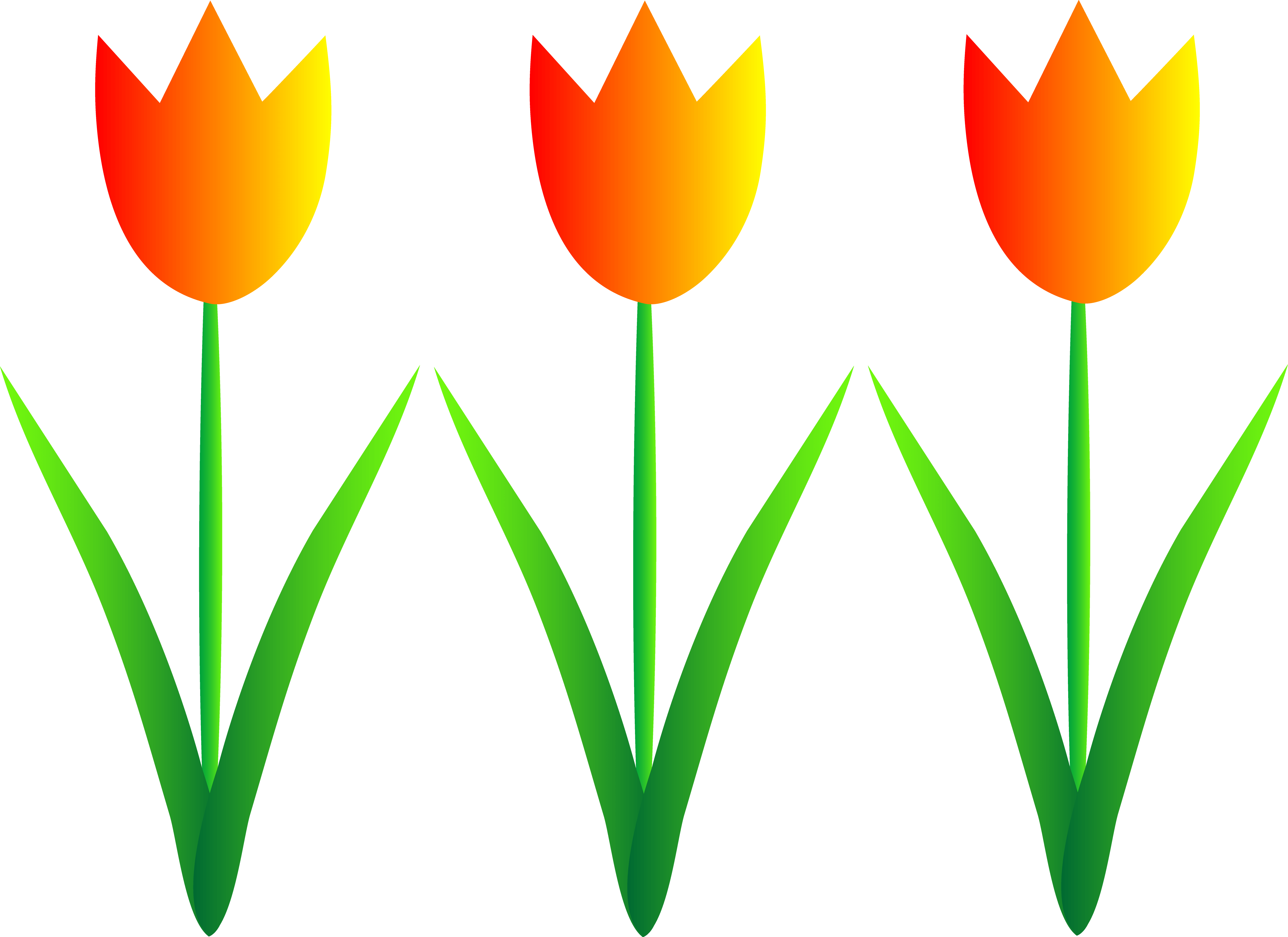 image transparent library Flower Border Clipart at GetDrawings