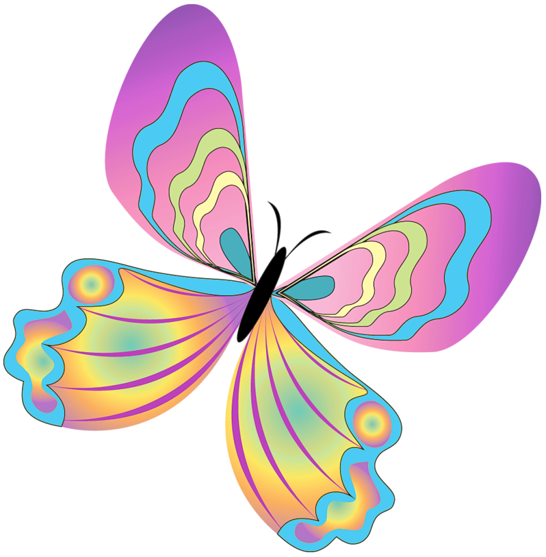 vector transparent download Butterfly spring butterfly clipart