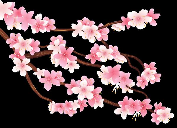 clip download Spring Flower PNG Image