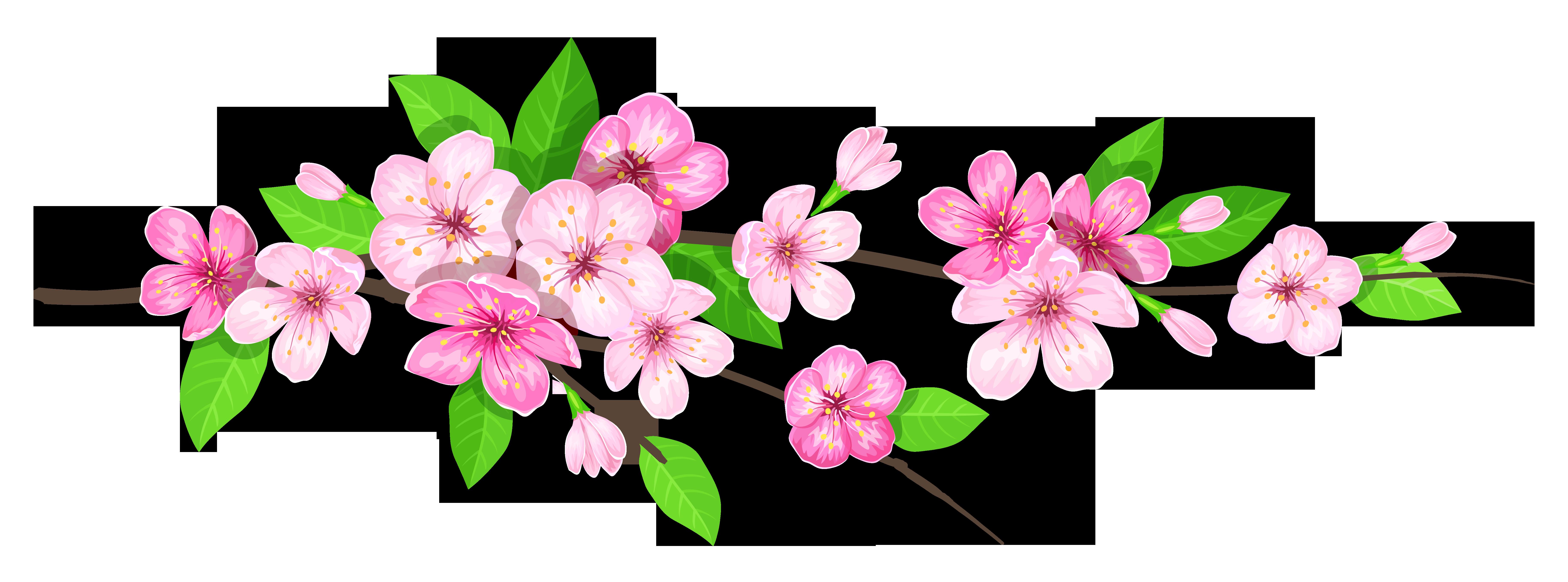 vector transparent stock spring transparent pink flower #103621716