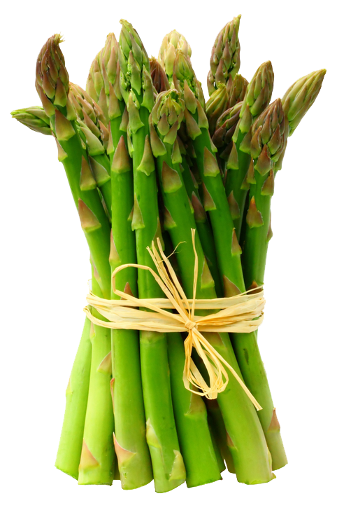 clip art freeuse Spring Vegetables And Why You Need Them