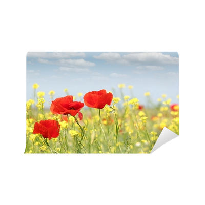 vector transparent download poppy flowers nature spring scene Wall Mural