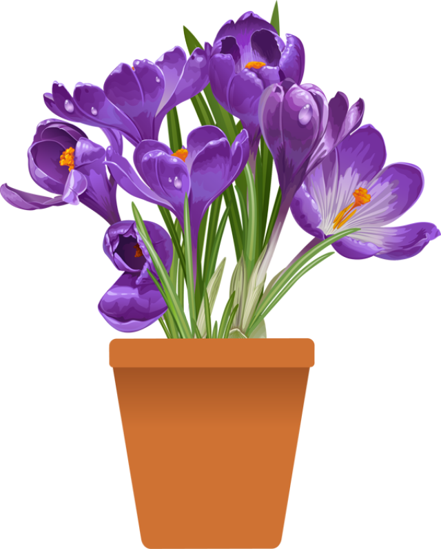 banner royalty free Clip art of beautiful. Violet clipart flower plant