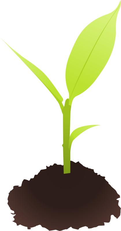 stock Sprout clipart. Free cliparts download clip