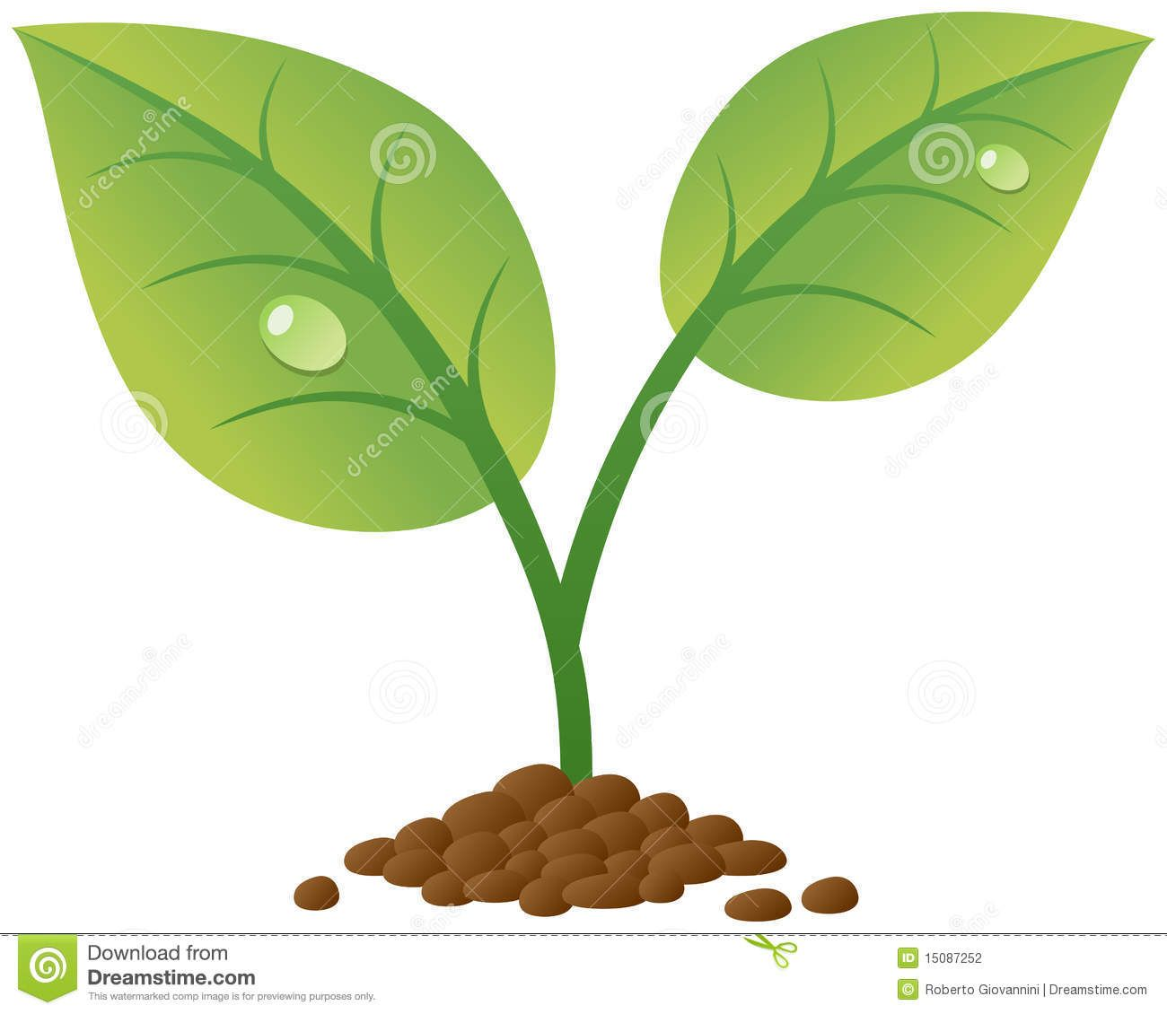 svg transparent download Sprout clipart. Plant kid plants leaves