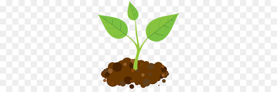 jpg royalty free library Leaf illustration plant . Sprout clipart