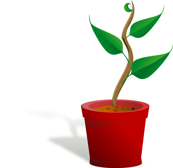 png library library Plants clip art free. Growth clipart grown up