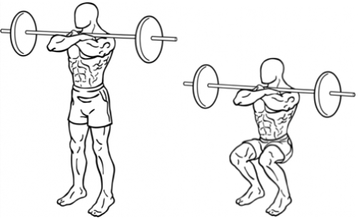 image transparent Compound Exercises For Building Lower Body Strength
