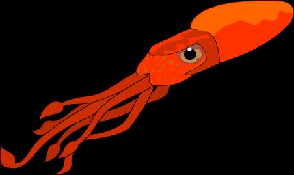 picture black and white Squid transparent. Animals aquatic ocotopus png.