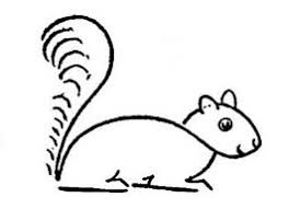 clip art black and white how to draw a squirrel climbing a tree