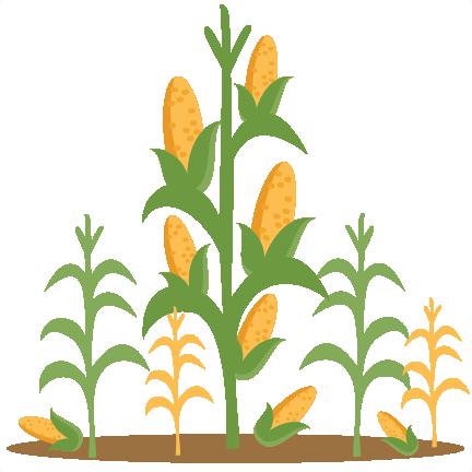 clipart free stock Corn Stalk Clipart Free Download Clip Art