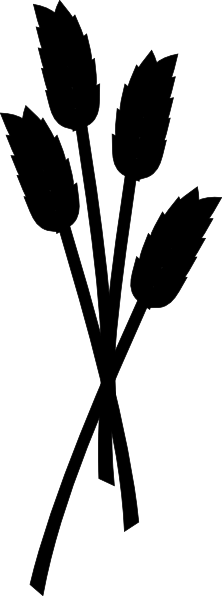 png black and white download Wheat stalk clipart. Corn silhouette at getdrawings