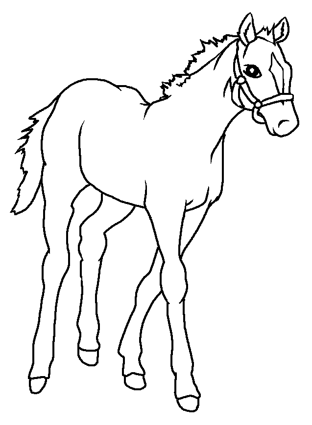 clip black and white Drawn horse baby
