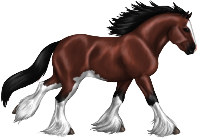 clipart royalty free library stallion drawing clydesdale horse #103686113