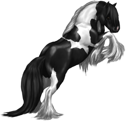 png free stallion drawing gypsy vanner horse #103689826