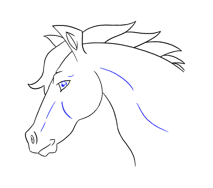image How to draw a Horse