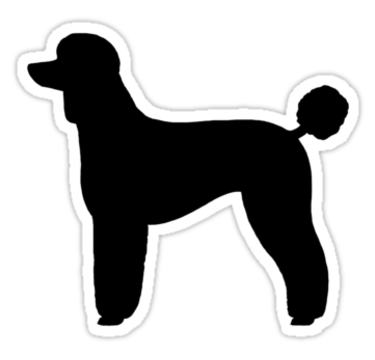 png stock Black Standard Poodle Silhouette