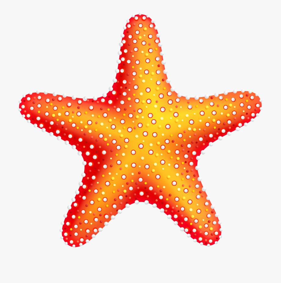 graphic royalty free download Starfish clipart. Star fish transparent cartoon.