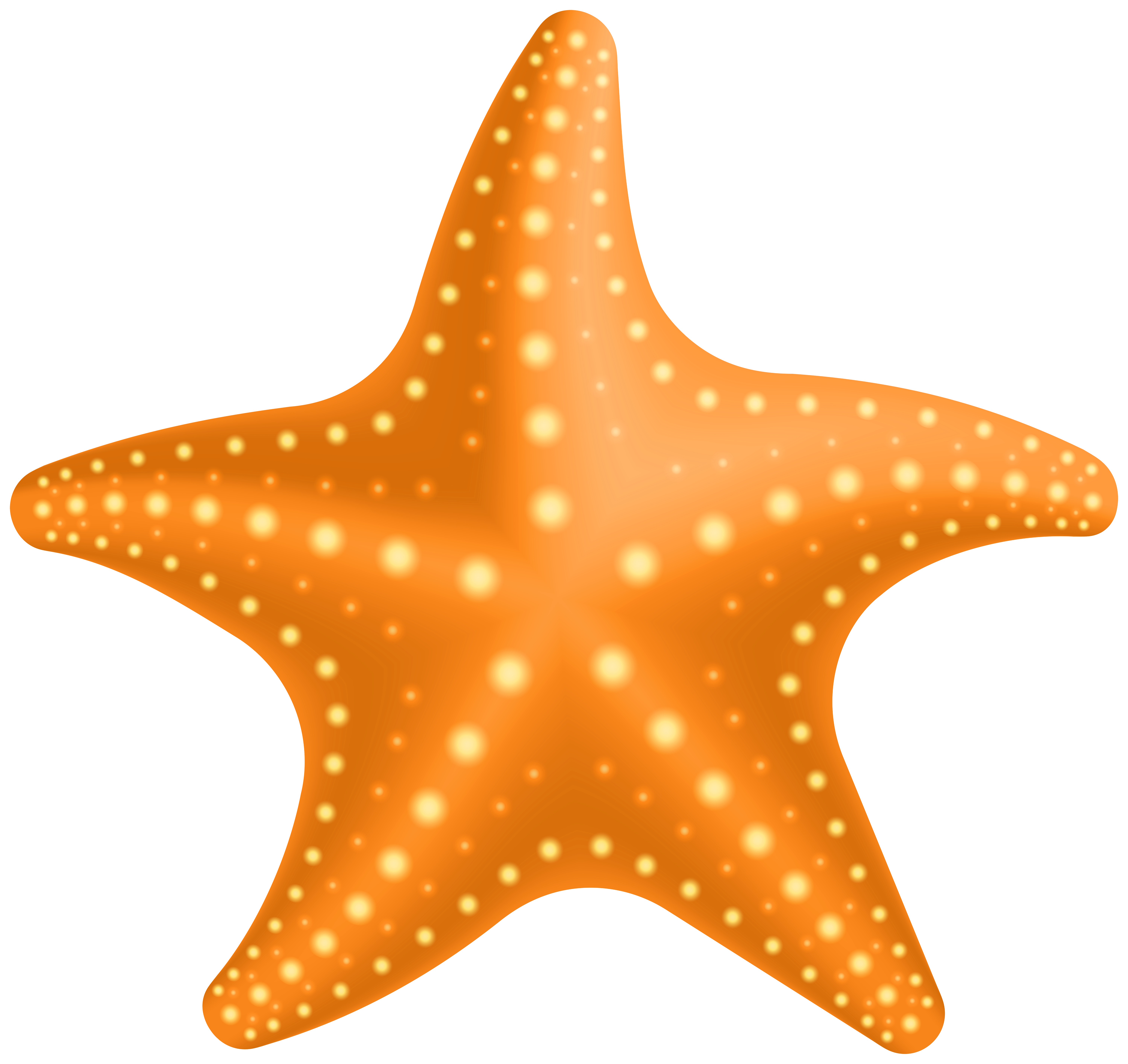 image black and white download Png gallery yopriceville high. Starfish clipart.