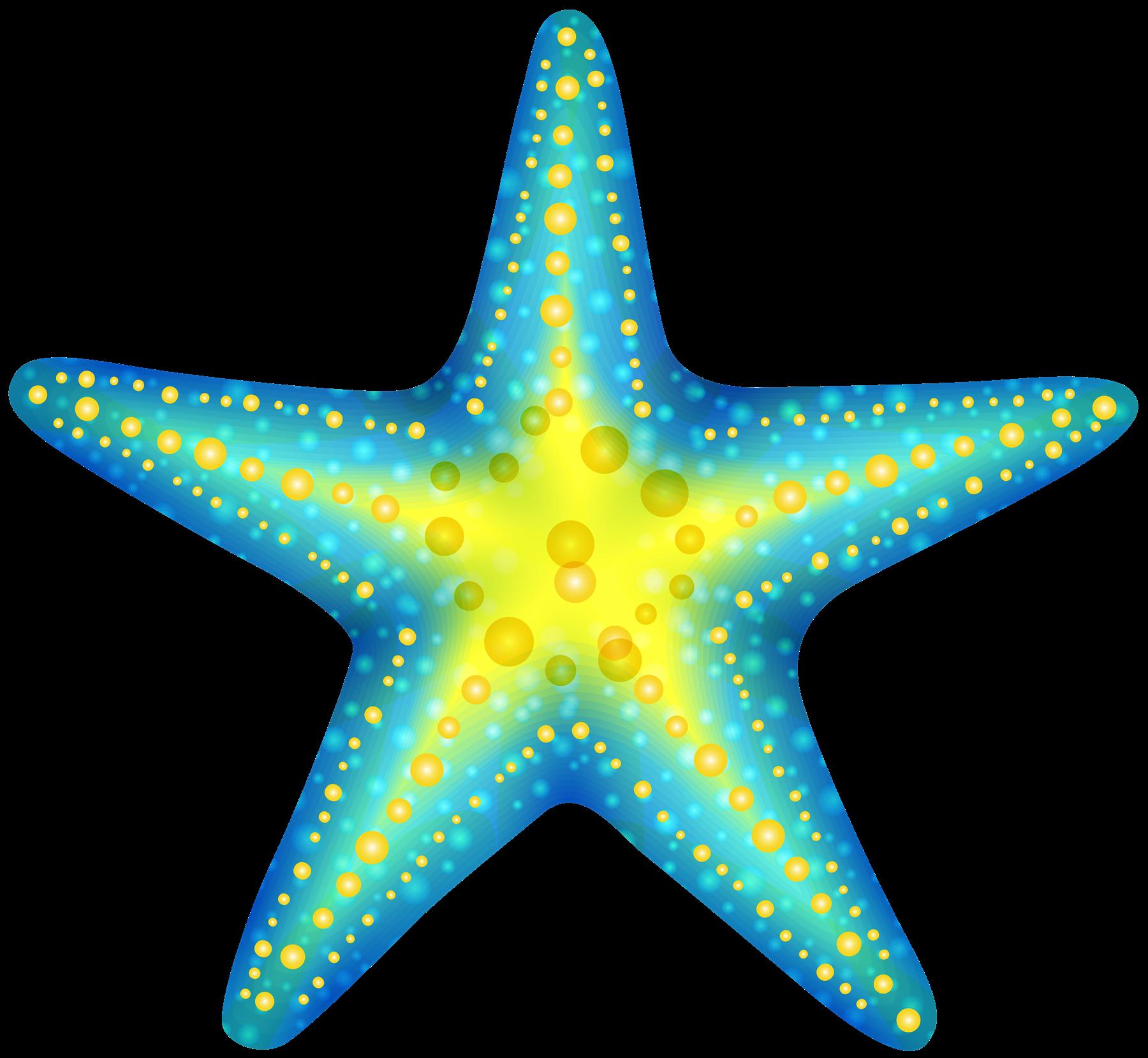 royalty free stock Cute Starfish PNG Photos