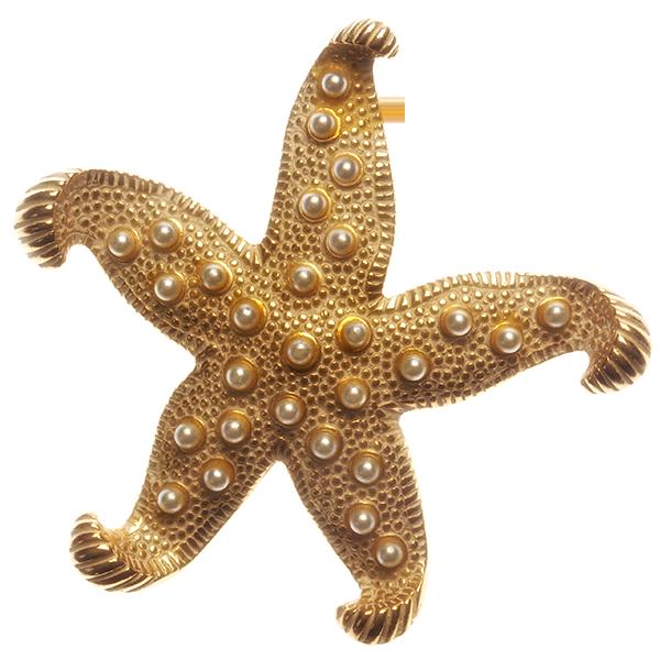 banner download starfish transparent gold #115870963