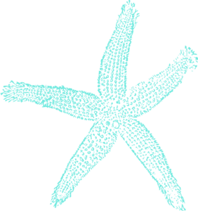picture free download Single Starfish Turquoise Clip Art at Clker