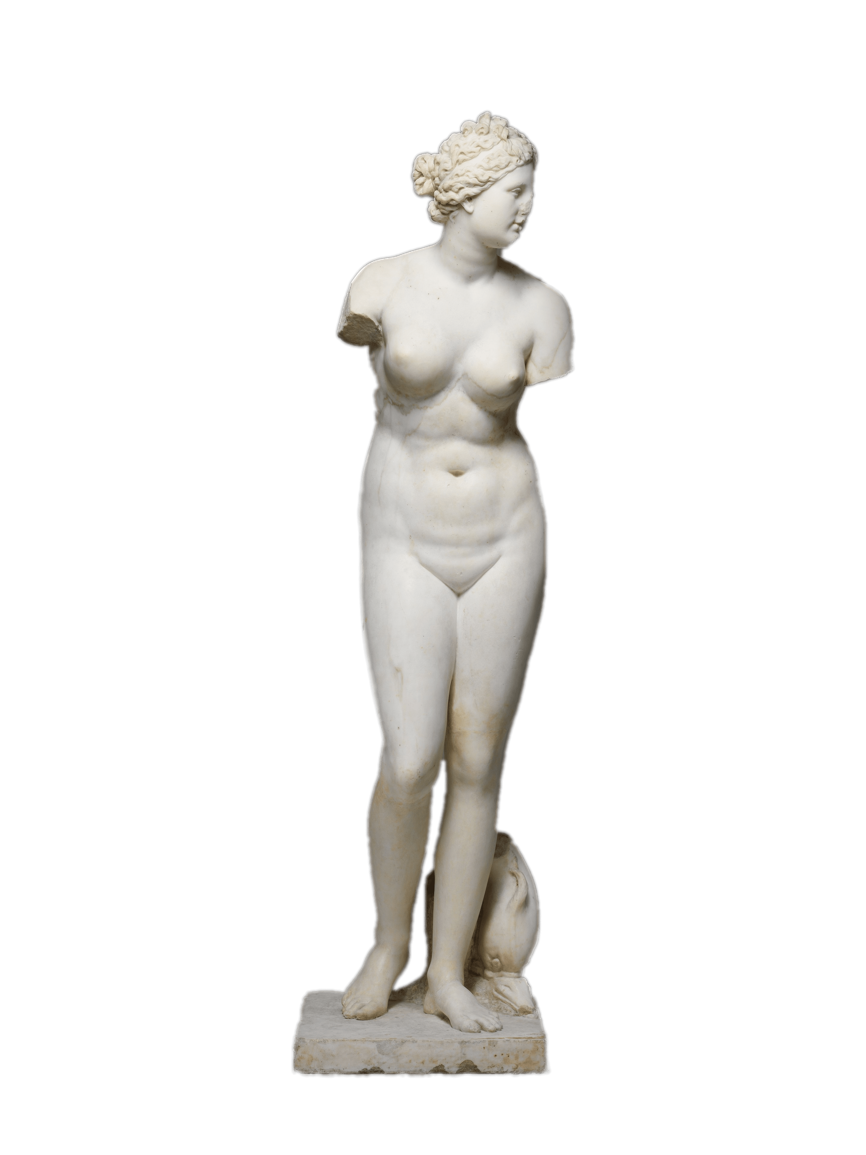 clipart free stock Statue transparent. Marble of aphrodite png
