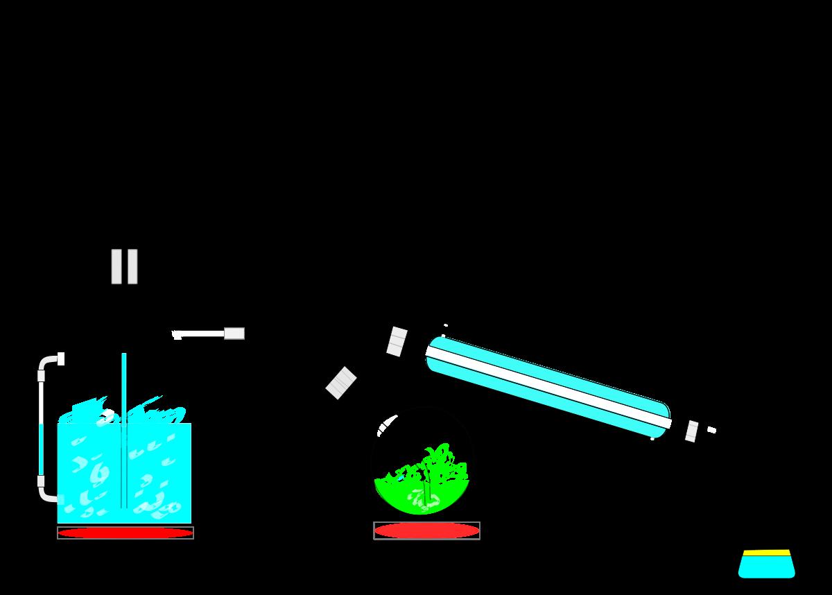 library Steam distillation
