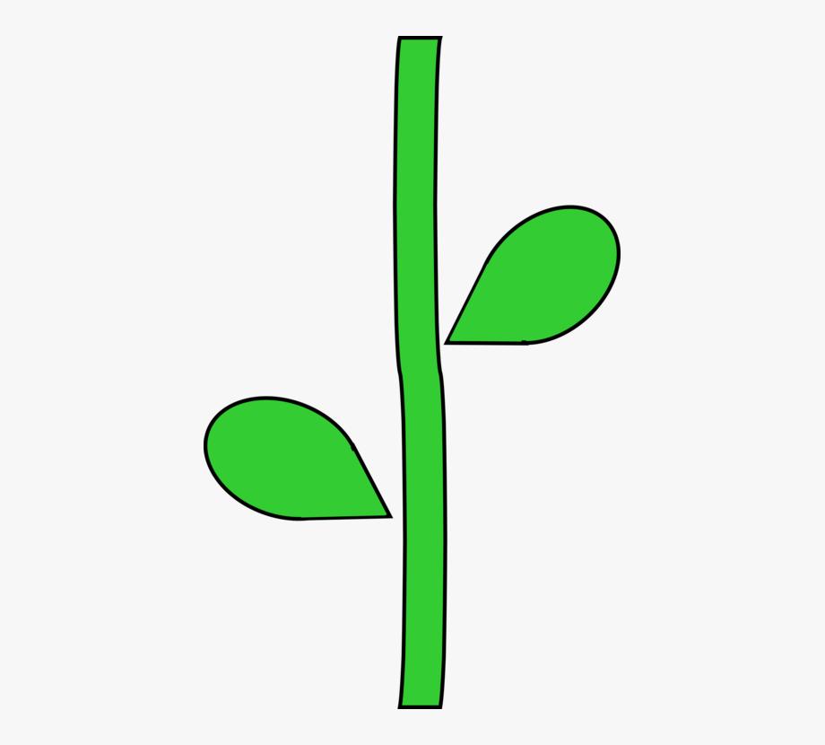 clip art library Stem clipart. Plant plants trunk root.