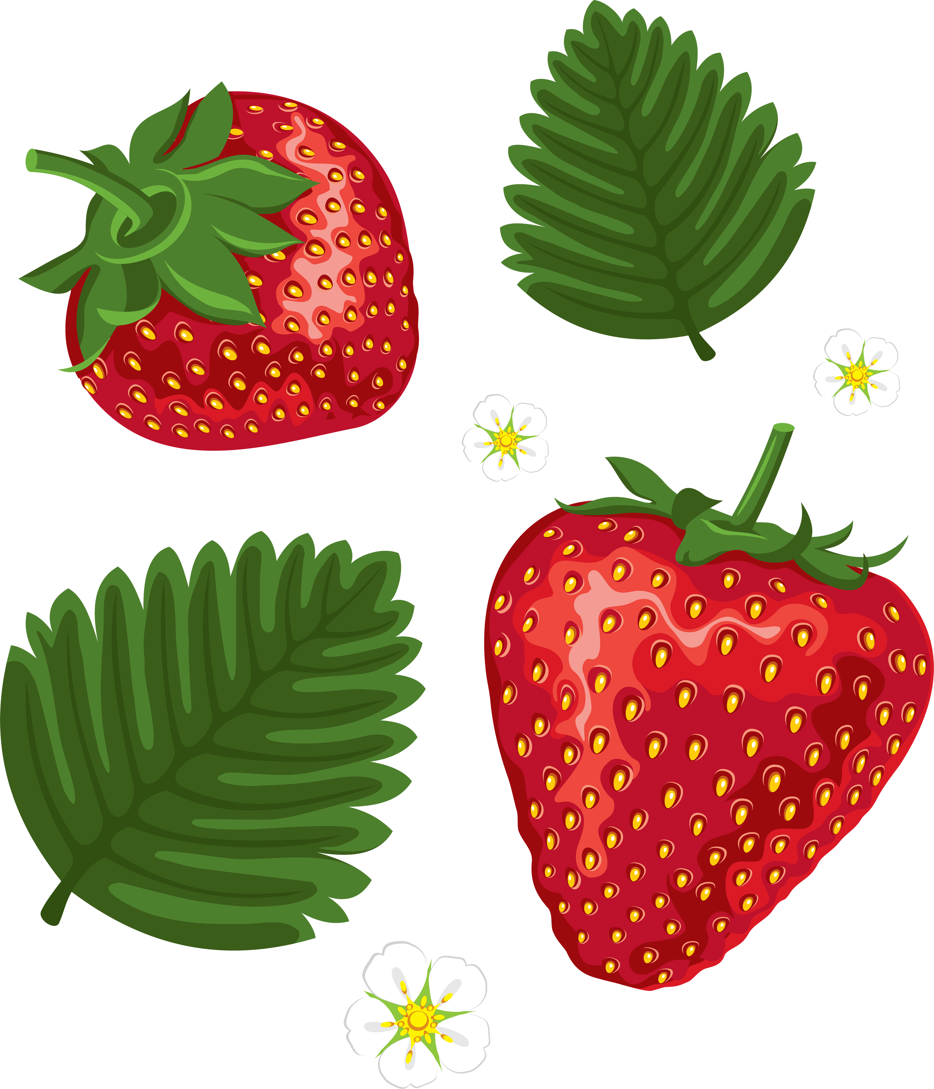 picture transparent library Strawberry clipart sad