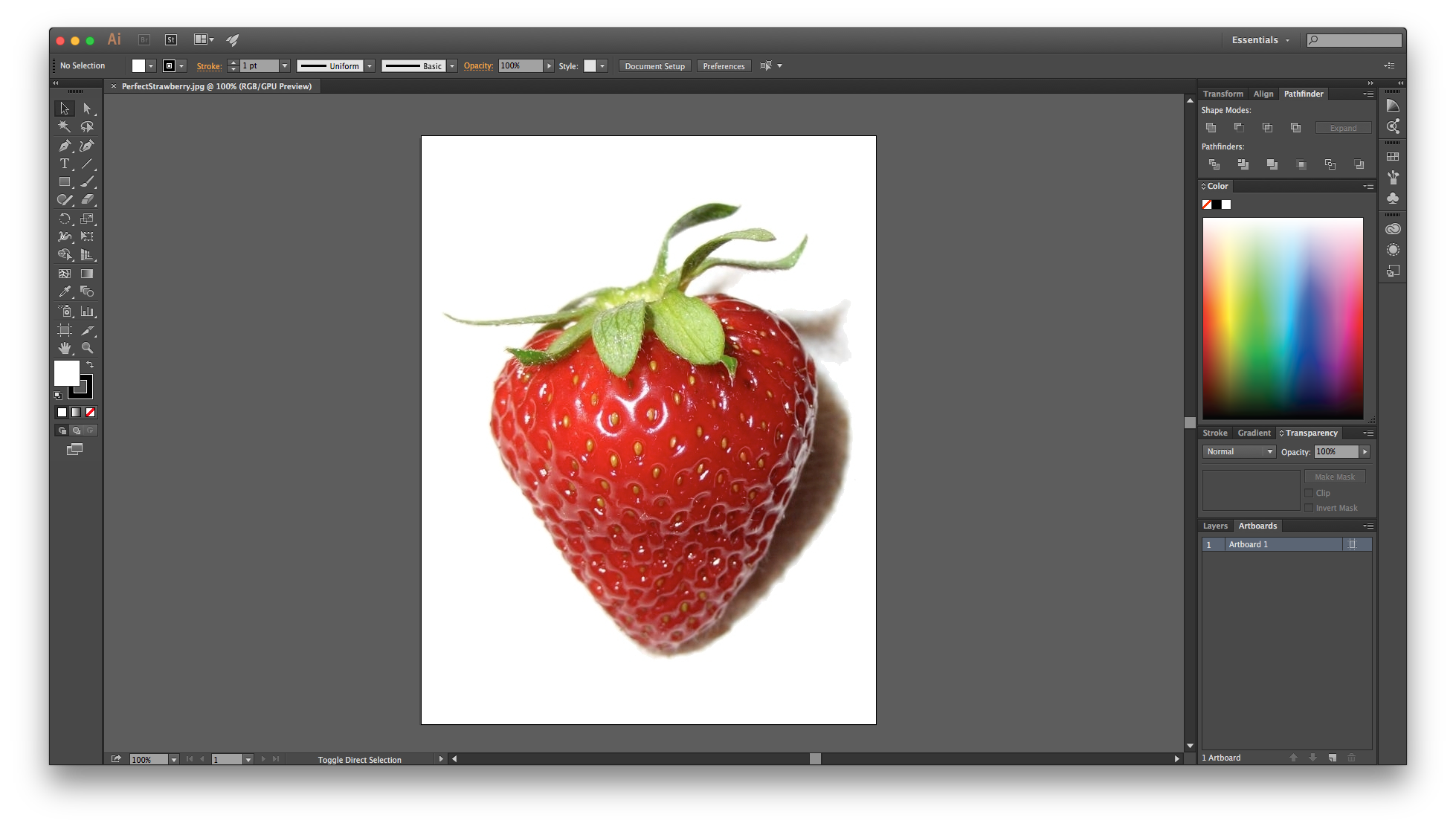 picture transparent download In illustrator for beginners. Drawing photography software