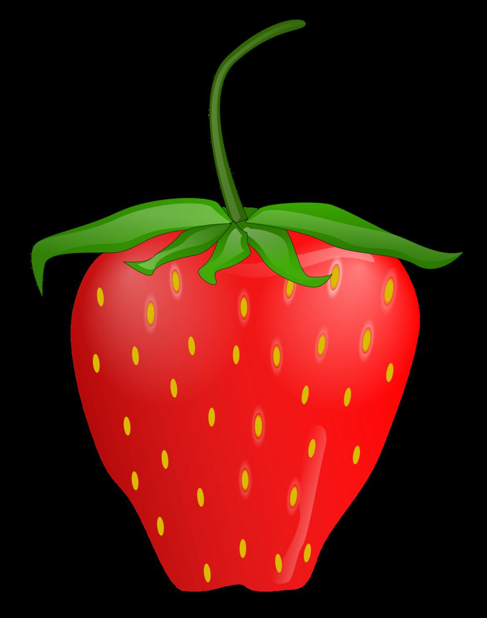 vector download Public Domain Clip Art Image