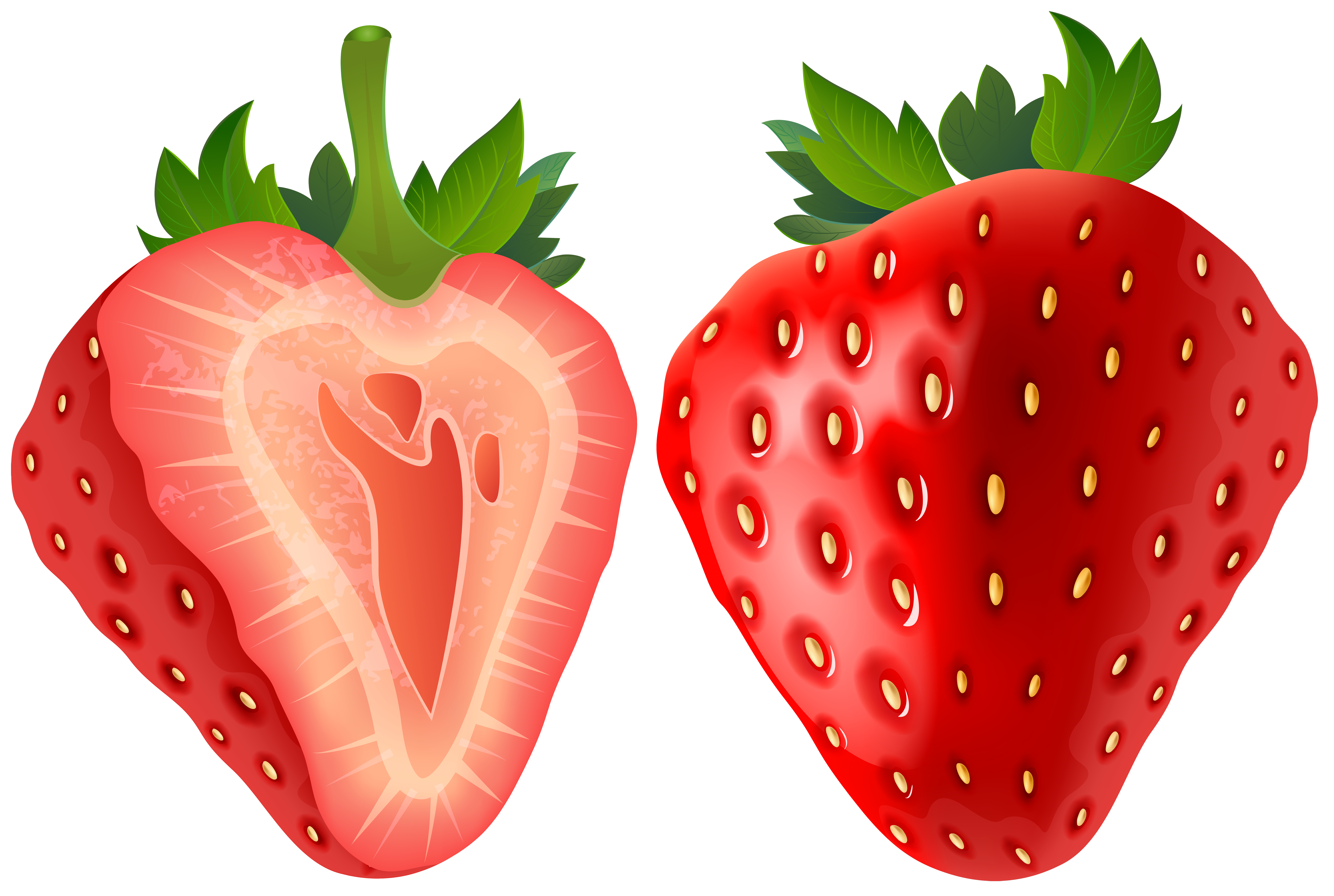 svg library stock Strawberry clipart. Transparent png clip art
