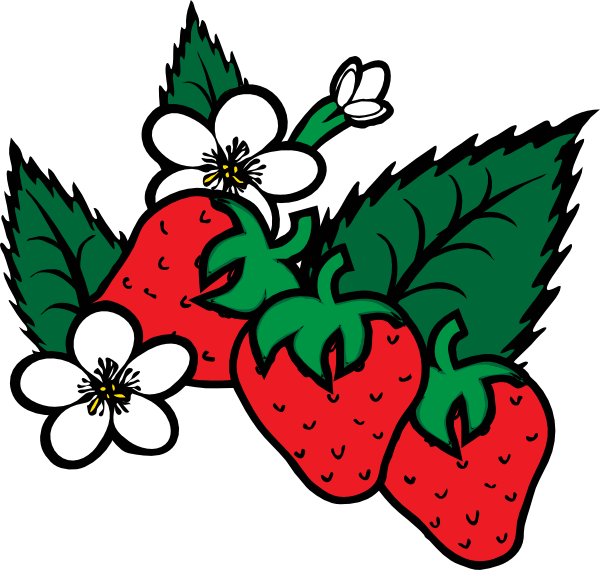 clip art royalty free Drawing strawberries animated. Strawberry vine at getdrawings