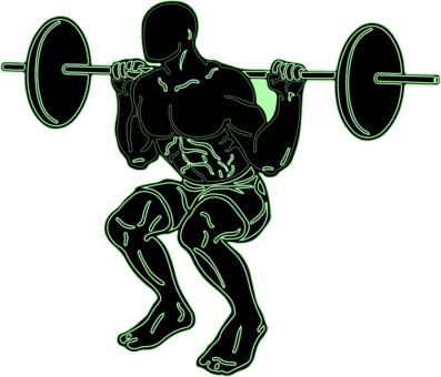 vector freeuse Dumbbell olympic weightlifting fitness. Barbell clipart weight training
