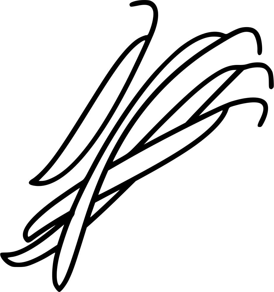 png transparent download Bean drawing full body. String beans at getdrawings