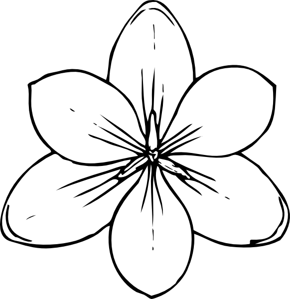 svg black and white library Flower Drawing Template at GetDrawings