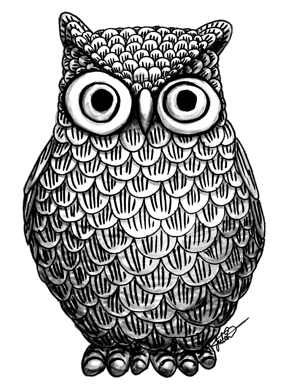 image free library  g zentangle for. Drawing owl abstract