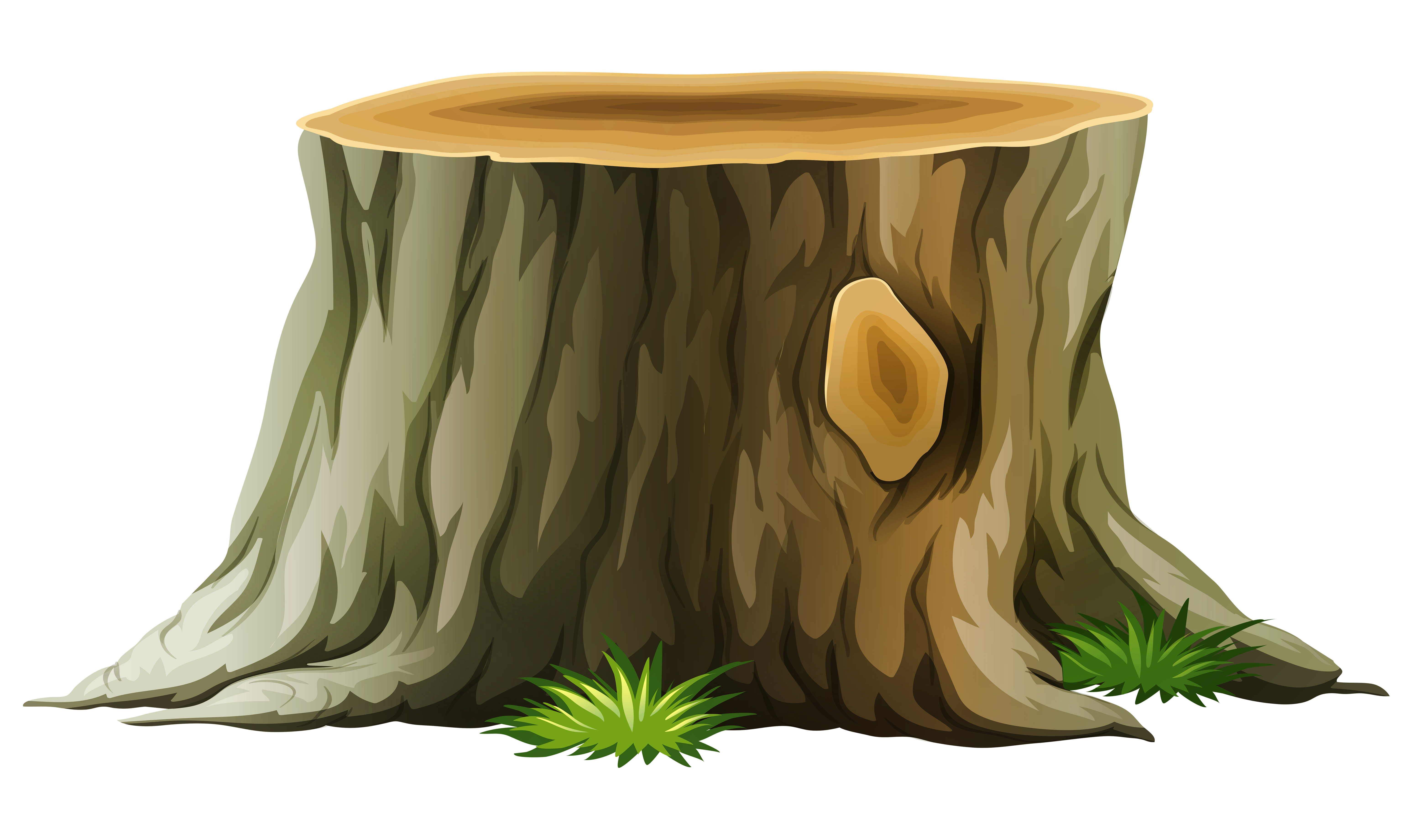 clipart freeuse Tree Stump PNG Clipart Picture